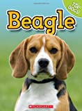George, Charles: Beagle (Top Dogs (Children's Press))