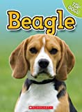 George, Charles: Beagle (Top Dogs (Scholastic))