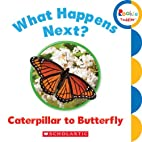 What Happens Next? Caterpillar to Butterfly…