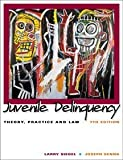Siegel, Larry J.: Juvenile Delinquency: Theory, Practice, and Law