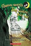 Strasser, Todd: Trop Sombre Pour Voir (Chauve-Souris) (French Edition)
