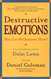 Goleman, Daniel: Destructive Emotions: A Scientific Dialogue with the Dalai Lama