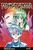 Anzai, Nobuyuki: Flame of Recca: v. 3 (Manga)