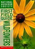 Hood, Susan: Wildflowers (National Audubon Society First Field Guides)
