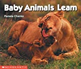 Chanko, Pamela: Baby Animals Learn