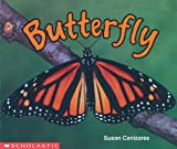Canizares, Susan: Butterfly