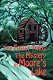 Brown, Jim D.: The Foster Twins In The Mystery At Moore's Lake