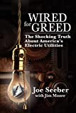 Seeber, Joe: Wired for Greed: The Shocking Truth About America's Electric Utilities