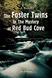Brown, Jim: The Foster Twins in the Mystery at Red Bud Cove