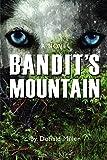 Miller, Donald: Bandit's Mountain