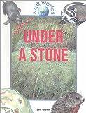 Green, Jen: Under a Stone