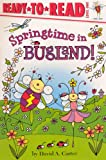 Carter, David A.: Springtime In Bugland! (Turtleback School & Library Binding Edition) (Ready-To-Read: Level 1 (Pb))