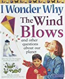 Ganeri, Anita: I Wonder Why The Wind Blows: And Other Questions About Our Planet