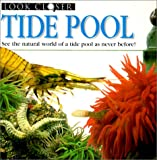 Gunzi, Christiane: Tide Pool (Look Closer (Pb))