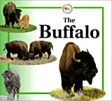 Crewe, Sabrina: Buffalo (Life Cycle of A...)