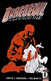 Smith, Kevin: Guardian Devil (Daredevil (Unnumbered))