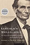 Shenk, Joshua Wolf: Lincoln's Melancholy: How Depression Challenged a President and Fueled His Greatness