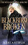 Blackbird Broken (The Witch King's Crown) by…