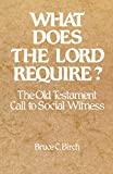 Birch, Bruce C.: What Does the Lord Require: The Old Testament Call to Social Witness