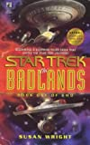 Wright, Susan: The Badlands, Book 1 (Star Trek)