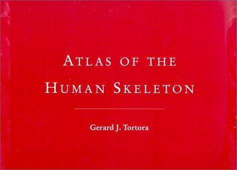 atlas-of-the-human-skeleton
