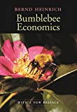 Heinrich, Bernard: Bumblebee Economics