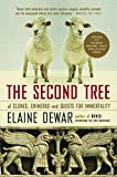Dewar, Elaine: The Second Tree: Of Clones, Chimeras and Quests for Immortality