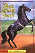 Black Stallion's Shadow by Steven Farley