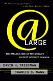 Mann, Charles C.: At Large: The Strange Case of the World's Biggest Internet Invasion