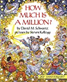 Schwartz, David M.: How Much Is a Million?