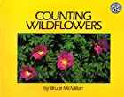 Counting Wildflowers by Bruce McMillan