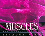 Simon, Seymour: Muscles: Our Muscular System
