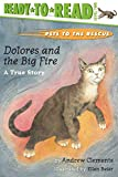 Clements, Andrew: Dolores and the Big Fire