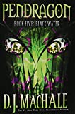 MacHale, D.J.: Black Water