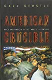 Gerstle, Gary: American Crucible: Race and Nation in the Twentieth Century