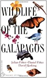 Hosking, David: Wildlife of the Galapagos