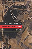 Meskell, Lynn: Private Life In New Kingdom Egypt
