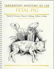 laboratory-anatomy-of-the-fetal-pig-laboratory-anatomy-series