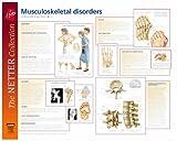Shaw, David: Frank H. Netter Musculoskeletal Disorders Poster (European Netter Poster Series)