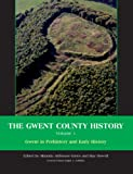 Green, Miranda: Gwent in Prehistory and Early History: Volume 1 (Gwent County History)