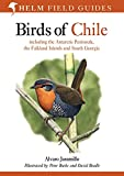 Jaramillo, Alvaro: Birds of Chile: Including the Antartic Peninsular, the Falkland Islands and South Georgia (Helm Field Guides)