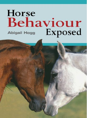 horse-behaviour-exposed