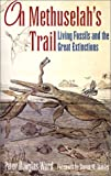 Ward, Peter Douglas: On Methuselah&#39;s Trail: Living Fossils and the Great Extinctions
