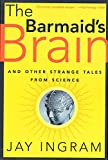 Ingram, Jay: The Barmaid's Brain: And Other Strange Tales from Science