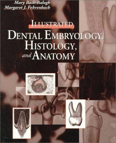 illustrated-dental-embryology-histology-and-anatomy-1e