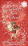 Barker, Cicely Mary: Strawberry's New Friend: A Flower Fairies Chapter Book