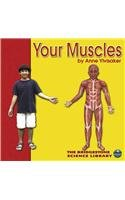 Your Muscles (The Bridgestone Science…