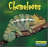 Glaser: Chameleons (Bridgestone Books World of Reptiles)