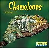 Glaser: Chameleons (Bridgestone Books World of Reptiles)