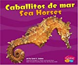 Capstone Press: Caballitos de mar / Sea Horses (Bajo las olas / Under the Sea)